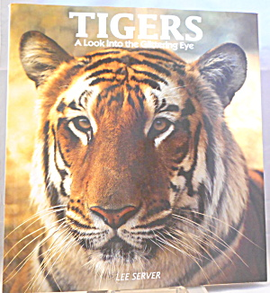 Tigers A Look Into The Glittering Eye Server (1992, Hardcover) B2842