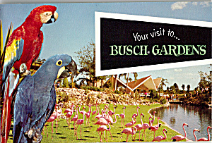 Your Visit to Busch Gardens (Image1)