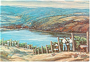 Great Western Vineyards, New York Postcard