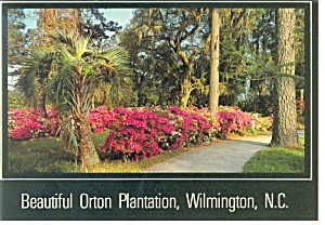 Wilmington, NC, Orton Plantation,Postcard (Image1)