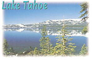 Lake Tahoe CA Postcard cs0093 (Image1)