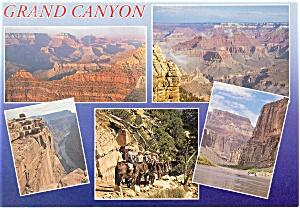 Grand Canyon AZ Five Views Postcard cs0095 (Image1)