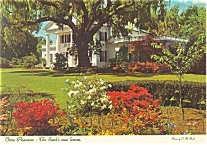 Orton Plantation Wilmington Nc Postcard Cs0098