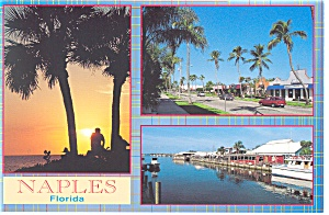 Naples FL 5th Avenue Old Naples Postcard cs0129 (Image1)