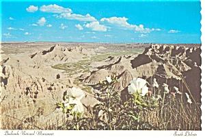 Badlands National Monument, SD Postcard (Image1)