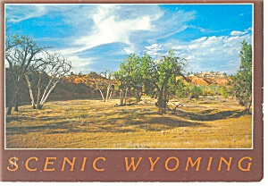 Scenic Wyoming The Old West Postcard cs0183 (Image1)