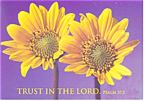 Trust in the Lord, Psalm 37:3 Postcard (Image1)