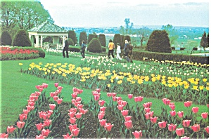 Hershey PA Hershey Gardens Postcard cs0361 (Image1)