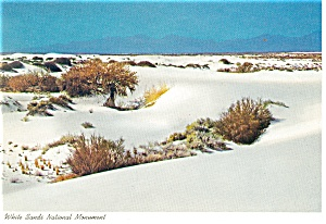White Sands National Monument NM Postcard cs0374 (Image1)