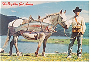 Trout On Horseback Comical Postcard Cs0419
