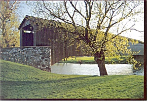 Pennsylvania Covered Bridge Amish Postcard (Image1)