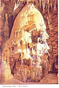 Carlsbad Caverns NM Christmas Tree New Cave Postcard cs0500 (Image1)