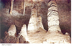 Carlsbad Caverns, NM Hall of Giants Postcard (Image1)