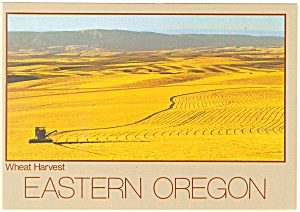 Wheat Harvest in Eastern Oregon Postcard cs0541 (Image1)