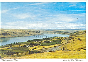 Biggs, Oregon, Columbia River Postcard (Image1)