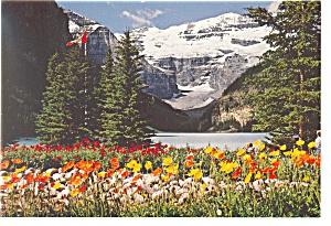 Lake Louise Banff  Alberta Canada Postcard cs0567 (Image1)
