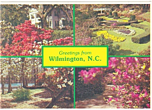Springtime In Wilmington Nc Postcard Cs0579
