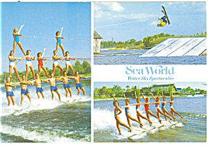 Water Ski Spectacular, Sea World, Postcard (Image1)