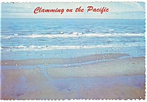 Clamming On The Pacific Postcard
