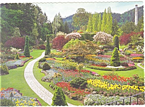 Butchart Gardens Victoria BC Canada Postcard cs0721 (Image1)