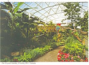 Victoria BC Canada The Crystal Garden Postcard cs0746 (Image1)