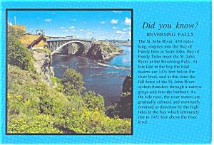 Reversing Falls, St John New Brunswick Postcard (Image1)