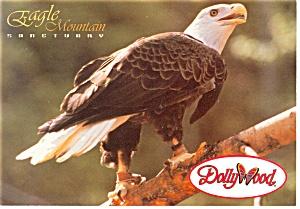 Pigeon Forge TN Eagle Mountain Sanctuary Postcard cs0820 (Image1)