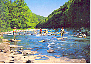 Mountain Streams Pennsylvania Postcard Cs0937