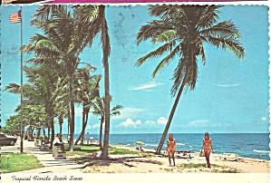 Tropical Florida Beach Scene cs10003 (Image1)