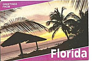 Florida Beach Scene Palms cs10004 (Image1)