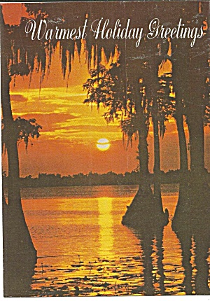 Florida Sunset On A Holidays Postcard Cs11173