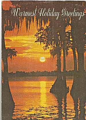 Florida Sunset On A Holiday Post Card Cs11307