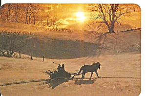 Christmas Post Card Horse Drawn Sleigh Tree Cs11404