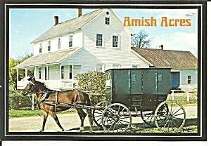 Amish Acres Napanee IN  Horse and Buggy cs11644 (Image1)