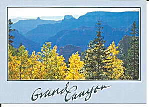 Grand Canyon National Park Az Autumn Scene Cs11680