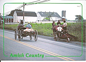 Pannslyvania Amish Buggies Farmers cs11704 (Image1)
