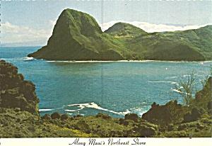 Maui Hawaii Along Maui s Northeast Shore cs11852 (Image1)