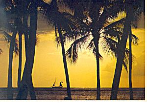 Hawaiian Moods Beach Scene Postcard cs1205 1978 (Image1)