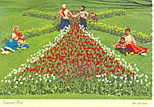 Tulips Centennial Park Holland MI Postcard cs1215 (Image1)