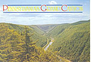 Pennsylvania Grand Canyon  Postcard cs1325 (Image1)