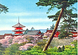 Cherry Blossoms and Temple in Japan Postcard (Image1)