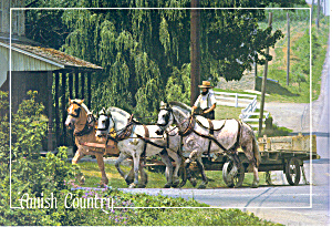 Amish Horse Drawn Farm Wagon Postcard (Image1)