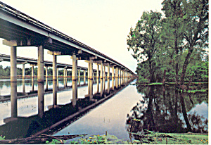 Mississippi Atchafalaya Basin Postcard cs1681 (Image1)