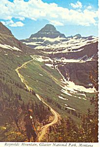 Reynolds Mountain,Glacier National Park, MT Postcard (Image1)