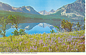 Triple Divide Peak Glacier National Park Mt Postcard Cs1702