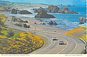 Cape Sebastian on Oregon Coast Postcard cs1705 (Image1)