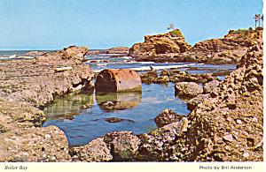 Boiler Bay on Oregon Coast Postcard cs1706 (Image1)