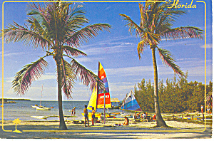 Coastal Scene Florida  Postcard cs1739 1987 (Image1)