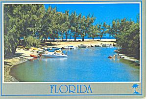 One of Many Lagoons Florida  Postcard cs1740 1986 (Image1)