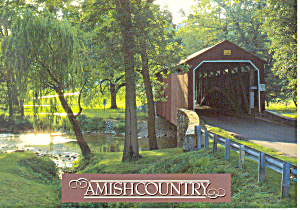 Amish Country Covered Bridge Postcard Cs1804